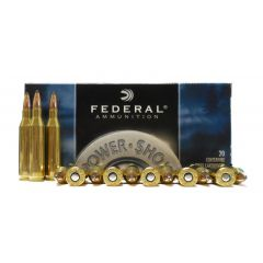 Federal 243 WIN 80 GR SP (243AS)