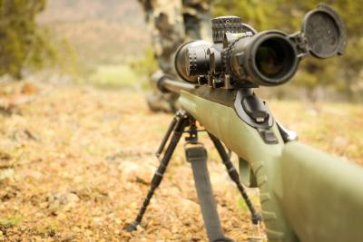 Find The Right Ammo Your Long Range Shots